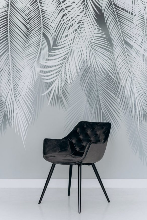 black chair beside green palm plant
